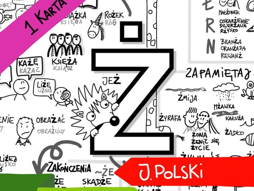 """Obrazkowa karta ortograficzna """"Ż"""""""
